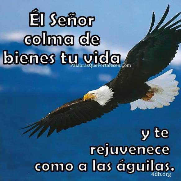 Dios Es Bueno Frases y Reflexiones El Señor Colma - DiosEsBueno.Com