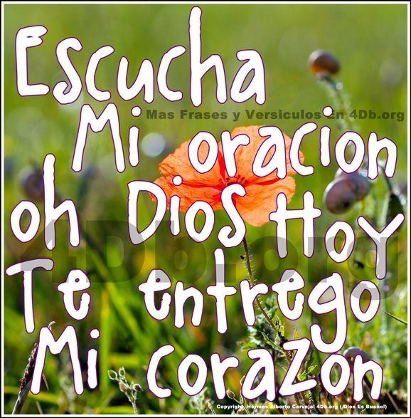 Dios Es Bueno Frases Y Reflexiones Escucha Mi Oración Oh Dios