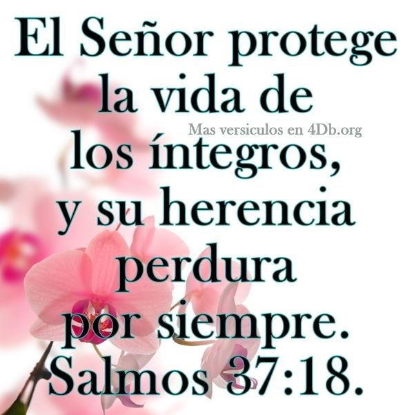 Salmos versiculos y Palabras Que Fortalecen Imagenes de Dios Es Bueno Para compartir en Facebook (11)