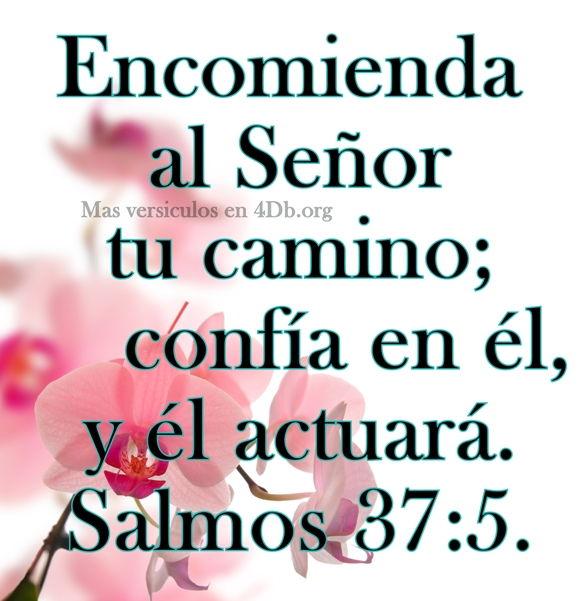 Salmos 37:5 Palabras Que Fortalecen Imagenes de Dios Es Bueno Para compartir en Facebook