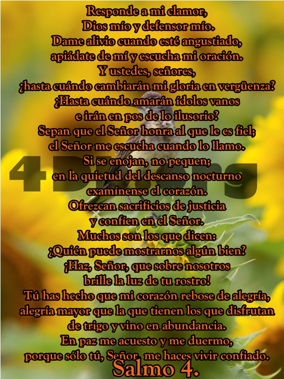 Salmos 4 Dios mio.