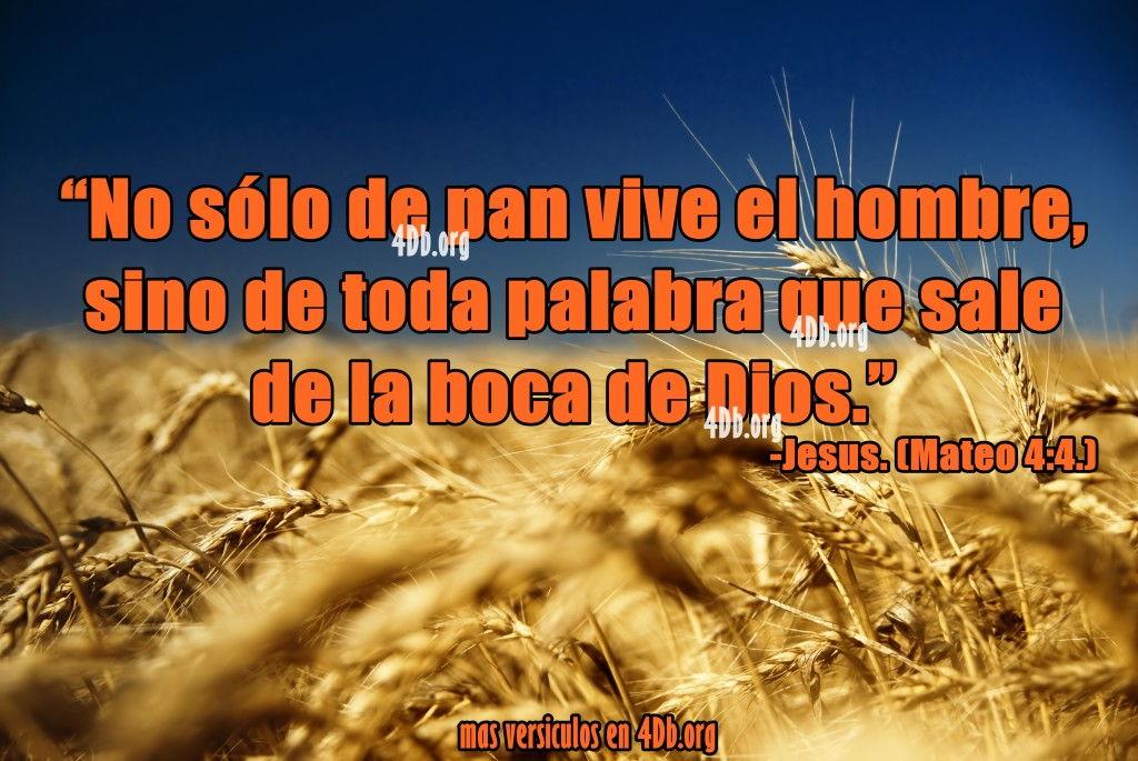 Eterno Jesus No Solo De Pan Vive El Hombre Frases De Amor