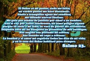 Salmo 23 Dios Es Bueno, Dios Es Amor, Frases De Amor, Reflexiones