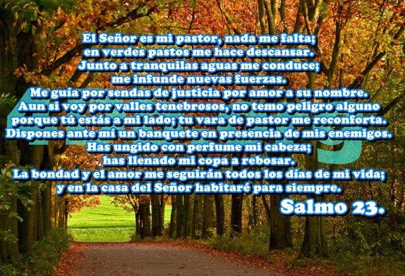 Salmo 23 No temeré mal alguno