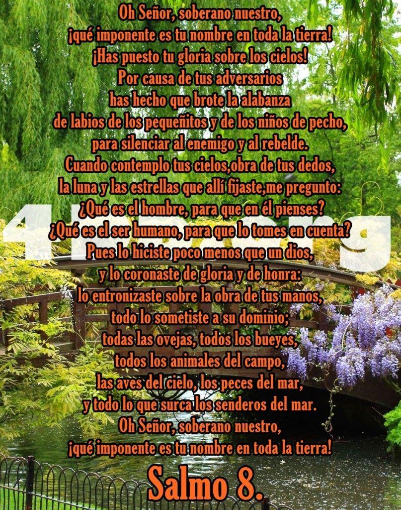 Versiculos De La Biblia De Animo: Salmo 8 Imponente Es Tu Nombre