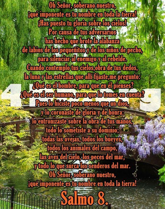 Versiculos Catolicos De La Biblia De Animo: Salmo 8 Imponente Es Tu Nombre