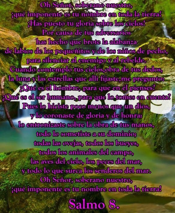 Versiculos De La Biblia De Animo: Salmo 8 Contemplo Tus Cielos.