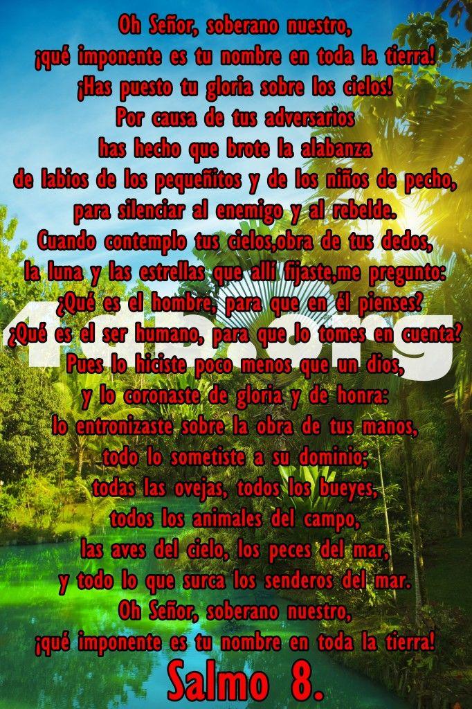 Salmos 8 La Luna Y Las Estrellas Frases De Amor Dios Es Bueno