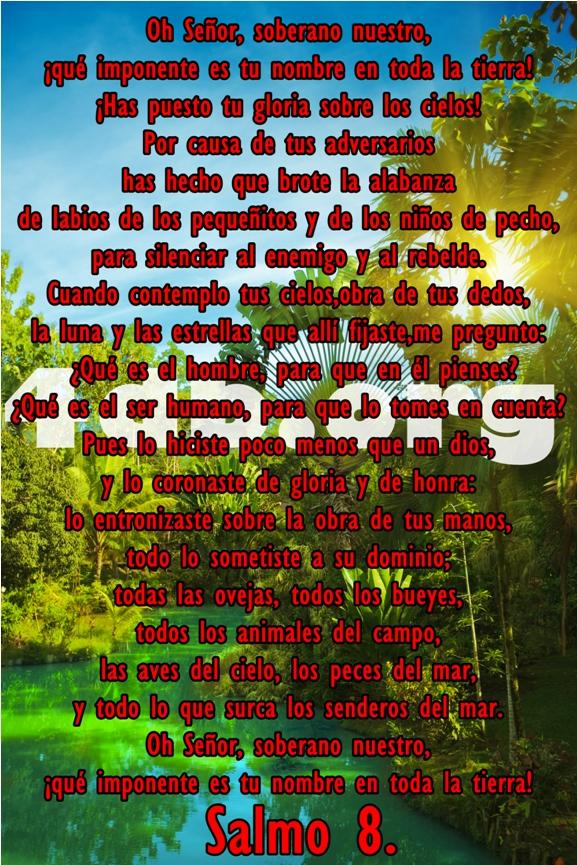 Versiculos De La Biblia De Animo: Salmos 8 La Luna Y Las Estrellas.