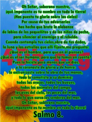 Salmo 8 Dios Es Amor, Dios Es Bueno, Reflexiones Frases Palabras de animo y consuelo, recursos cristianos, versiculos diarios de la biblia  (8)