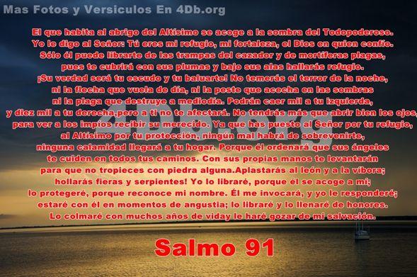 Salmo 91 bajo sus alas hallarás refugio