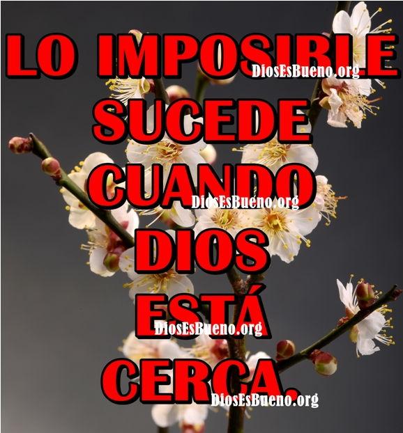 Lo Imposible Sucede