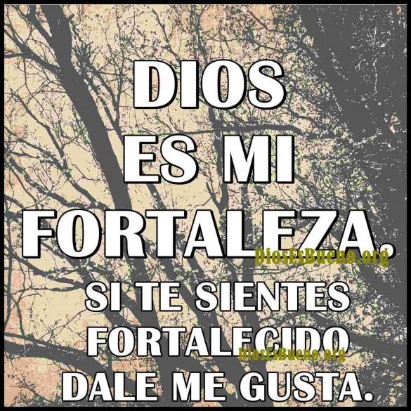 Dios Es Mi Fortaleza