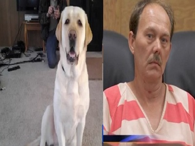 Estadounidense explota su perra porque creía que estaba poseída por el diablo