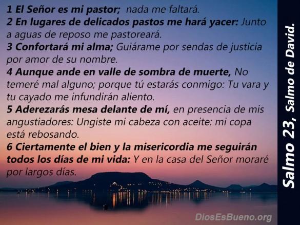 Salmo 23 Delicados Pastos