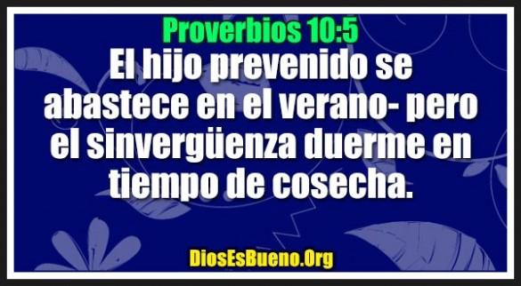 Proverbios 10:5