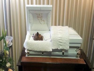 Velan perro en una funeraria en Puerto Rico