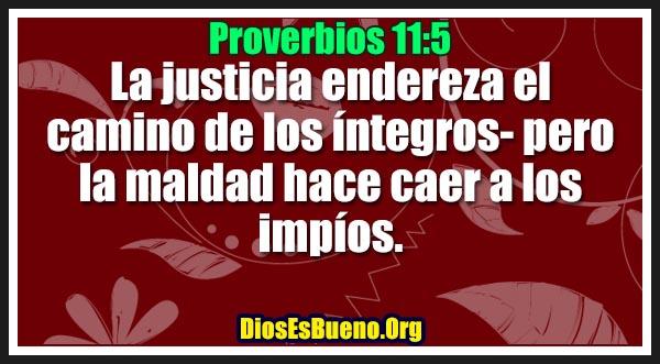 Proverbios 11:5