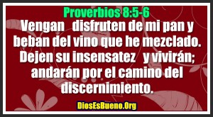 Proverbios 8:5-6