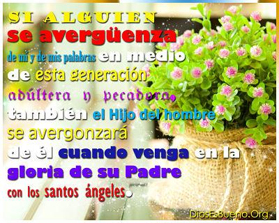 Lucas 9-26