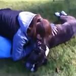 Un video que debes ver Entrenador resucita a un perro