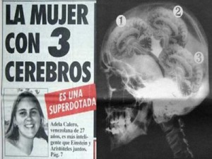 Adela Calero tiene tres cerebros