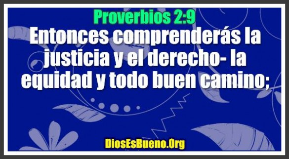 Proverbios 2:9. Entonces comprenderás.