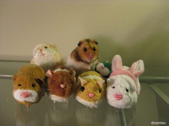 02 Hamster escondido entre camaradas