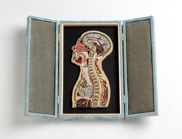 Figura de la parte superior del cuerpo
