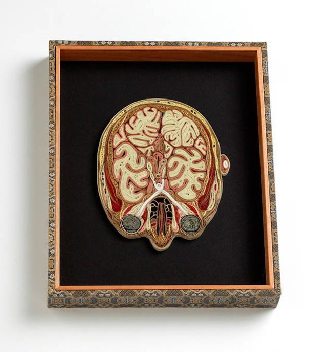 Lisa Nilsson, experta en Figuras de anatomía humana, página 2