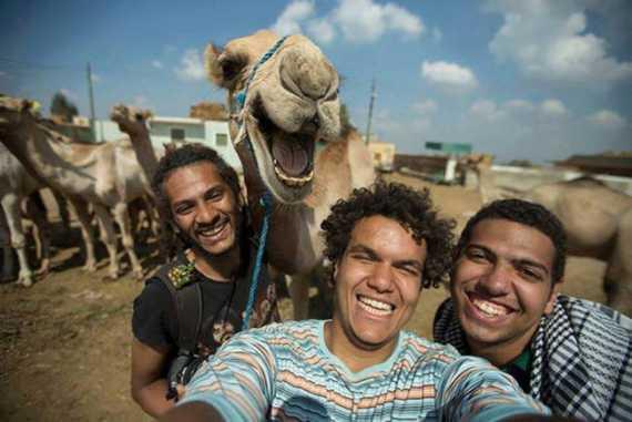 01 camello