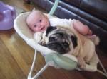 012 Bebes y sus mascotas, descansando
