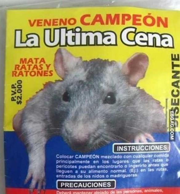 012 soluciones ingeniosas, mata rata con texto biblico