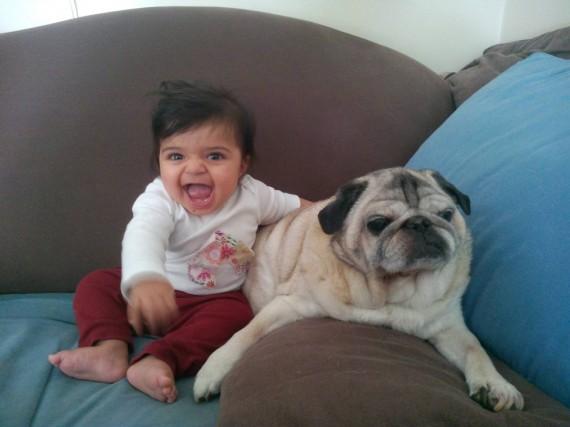 019 Bebes y sus mascotas, en el mueble