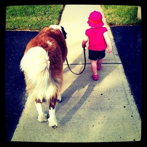 02 Bebbes y sus mascotas, paseando