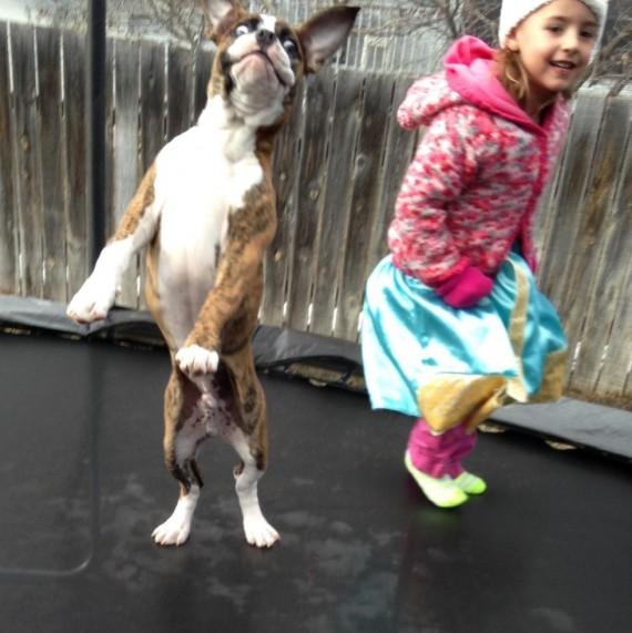 021 Bebes y sus mascotas, saltando