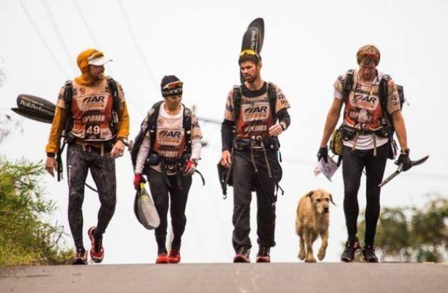 Este Perro Callejero Siguió A Unos Atletas Hasta La Meta Final