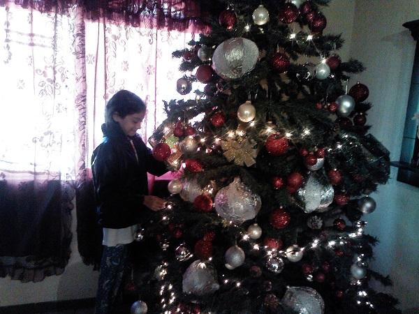 Festejos y tradiciones que los latinos disfrutamos en Navidad. 1