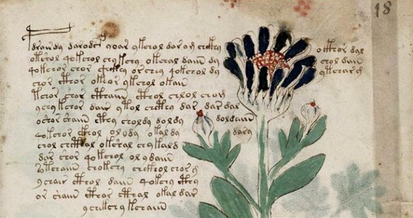 Misterios sin resolver, El manuscrito Voynich