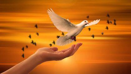 Confía En Dios Y Pronto Él Hará Grandes Cosas En Tu Vida