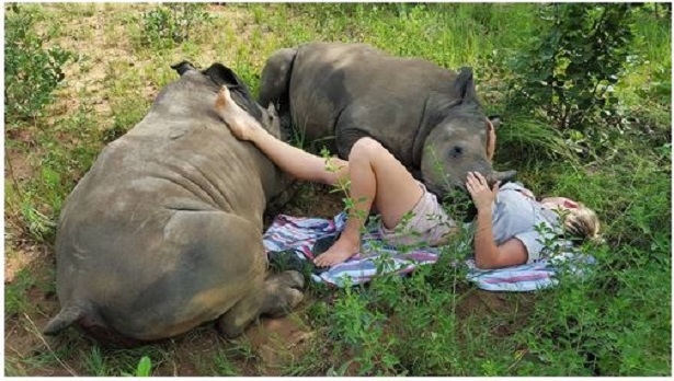 Rinoceronte bebé encuentra mamá humana