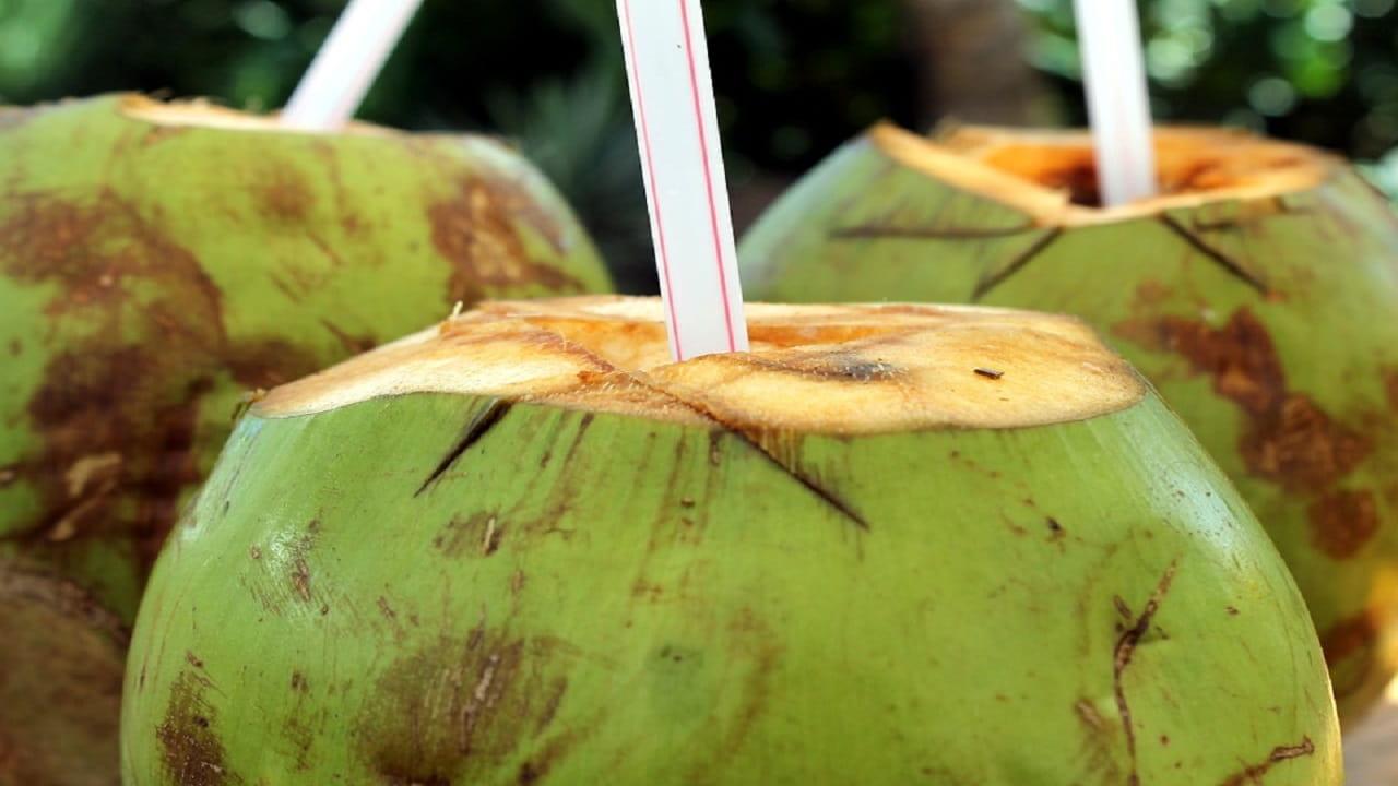 Conozca algunos beneficios del agua de coco