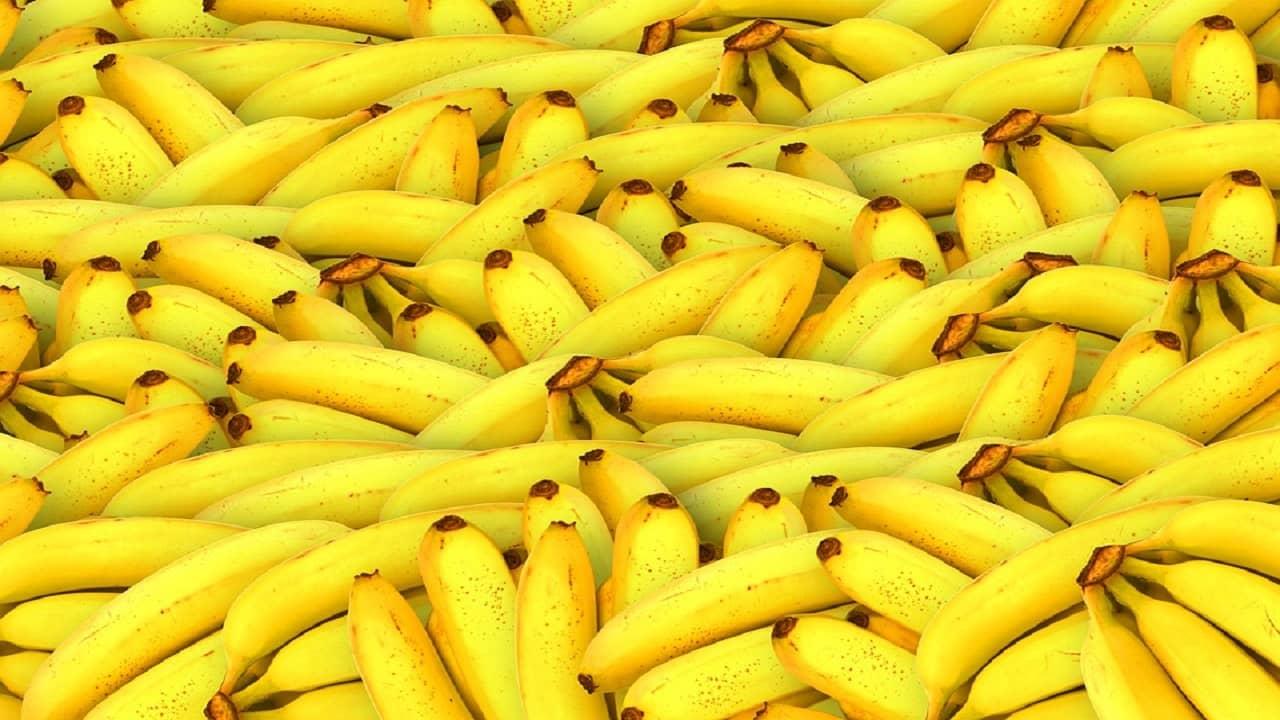Conozca las mejores frutas tropicales para la salud