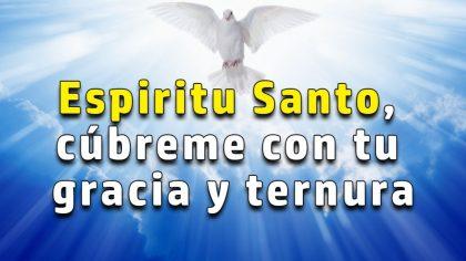 Deja que Su Santo Espíritu te acompañe en tu sufrimiento