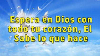 Dios sabe lo que hace, no te desesperes 💖